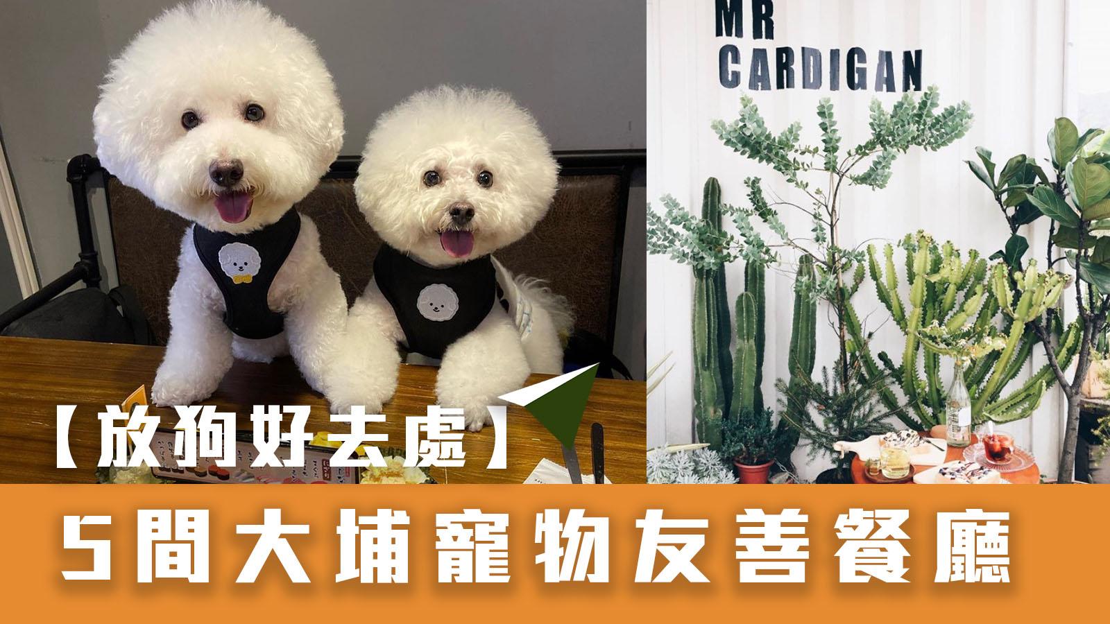 【狗狗好去處】5間大埔寵物友善餐廳