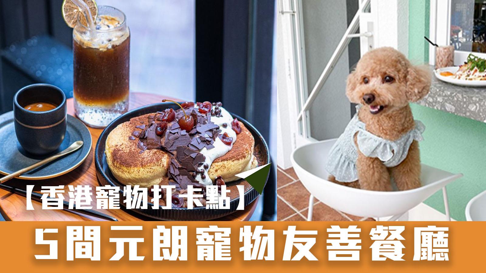 【香港寵物打卡點】5間元朗寵物友善餐廳
